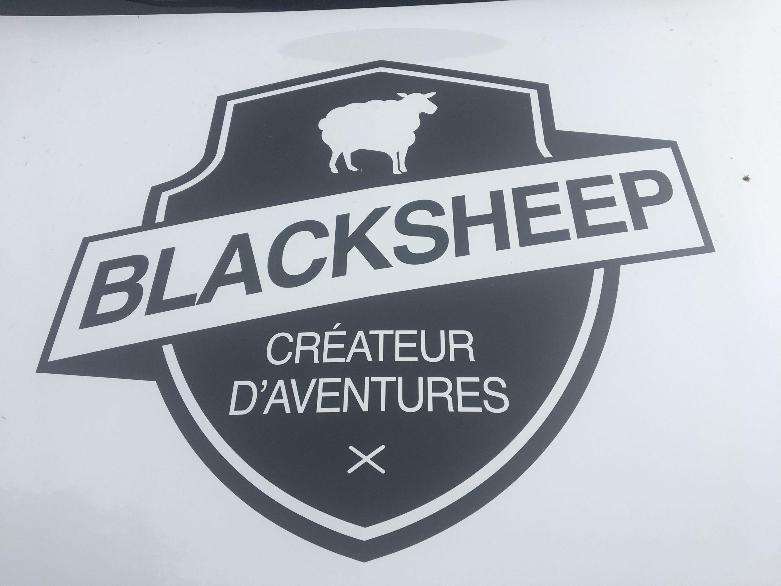 logo blacksheep