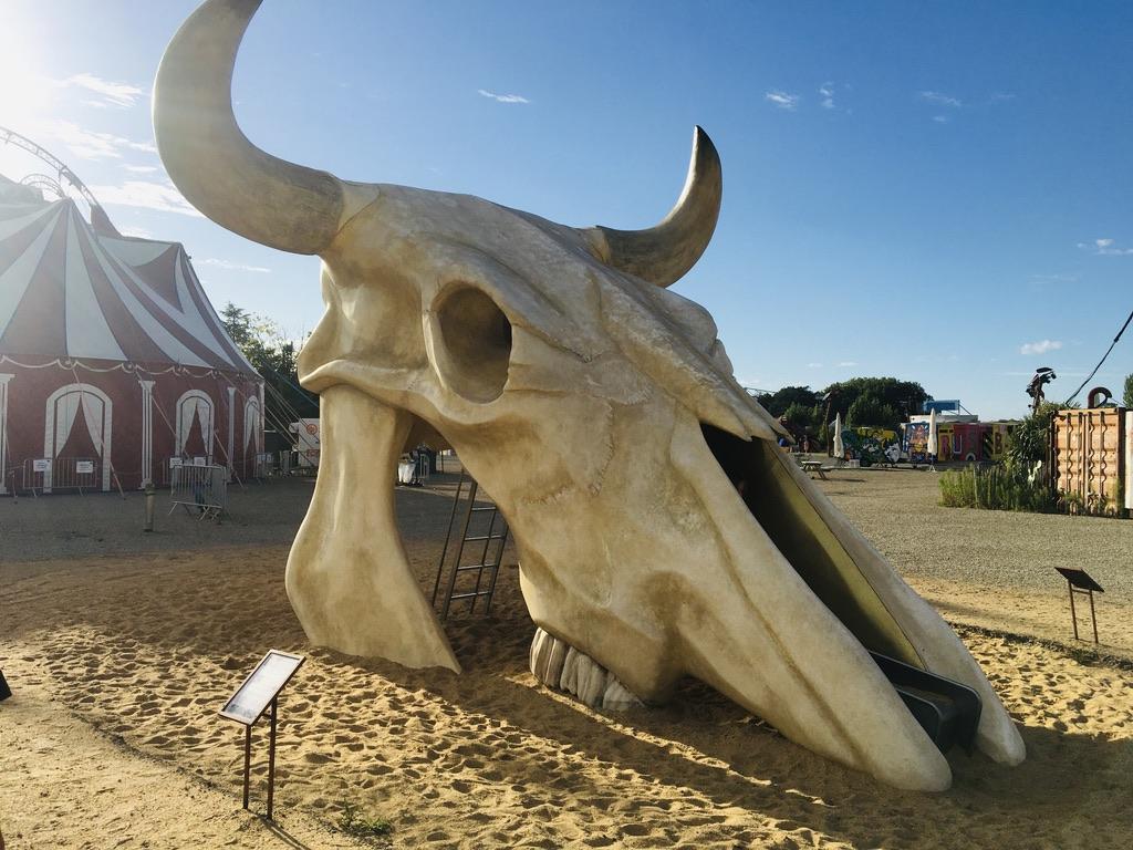 squelette buffle géant