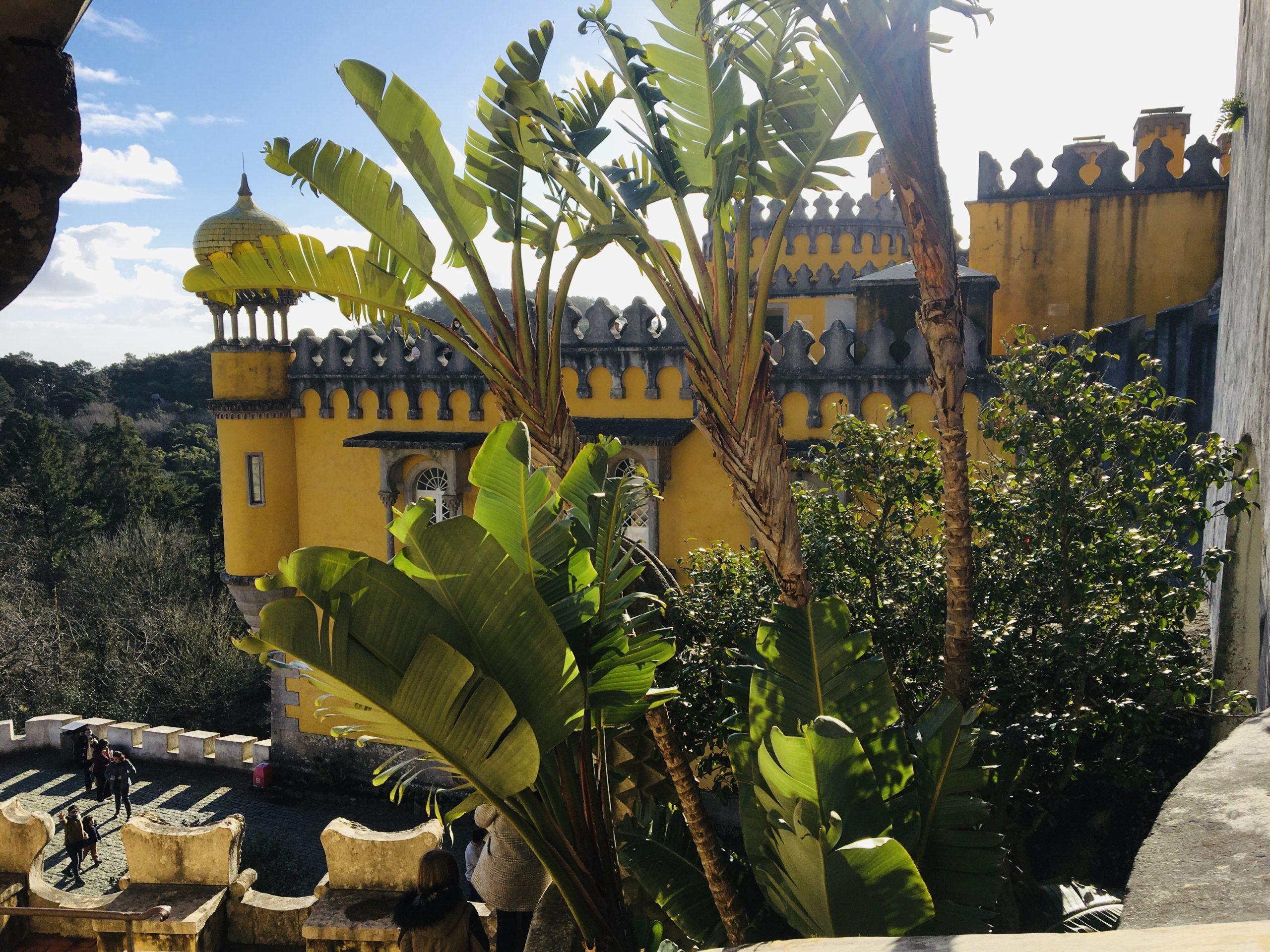 château pena avec vegetation