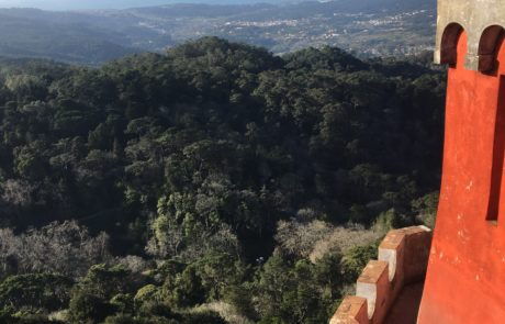 vue palais pena sur montagne