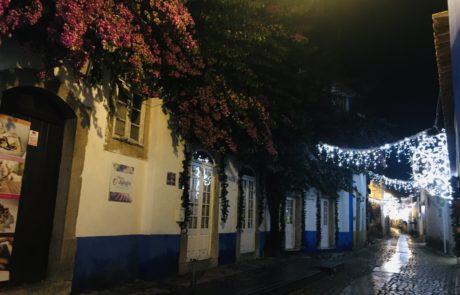 ruelle et bougainvillier de nuit